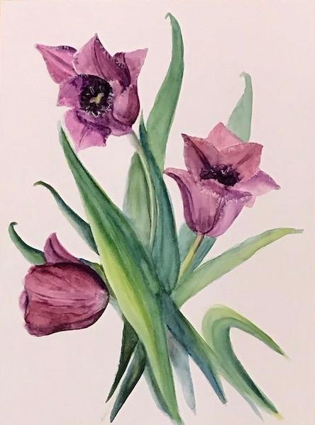 Картина акварелью Сиреневые тюльпаны