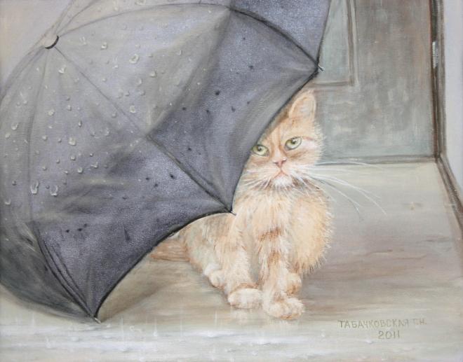 Зонт для Васьки.
