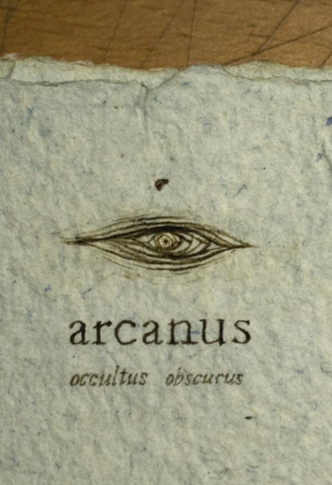 SUBEXTRA arcanus