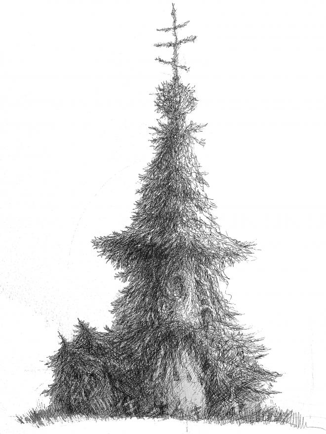 Картина Каргополь.