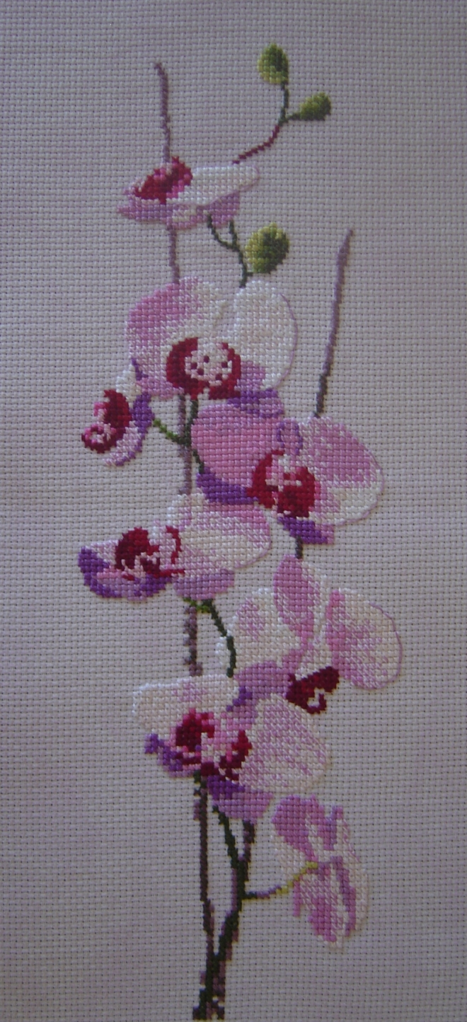 Вышивка крестом картины орхидеи