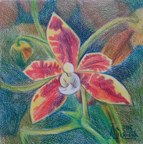 Картина Фаленопсис 3